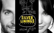Silver Lining  Playbook  BluRay HD Moviies Price In Pakistan