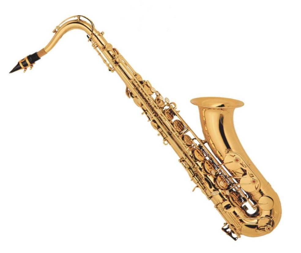 Alto Saxophone Brass price in Pakistan The alto saxophone
