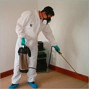 cockroach-control-chemical-spray.jpg